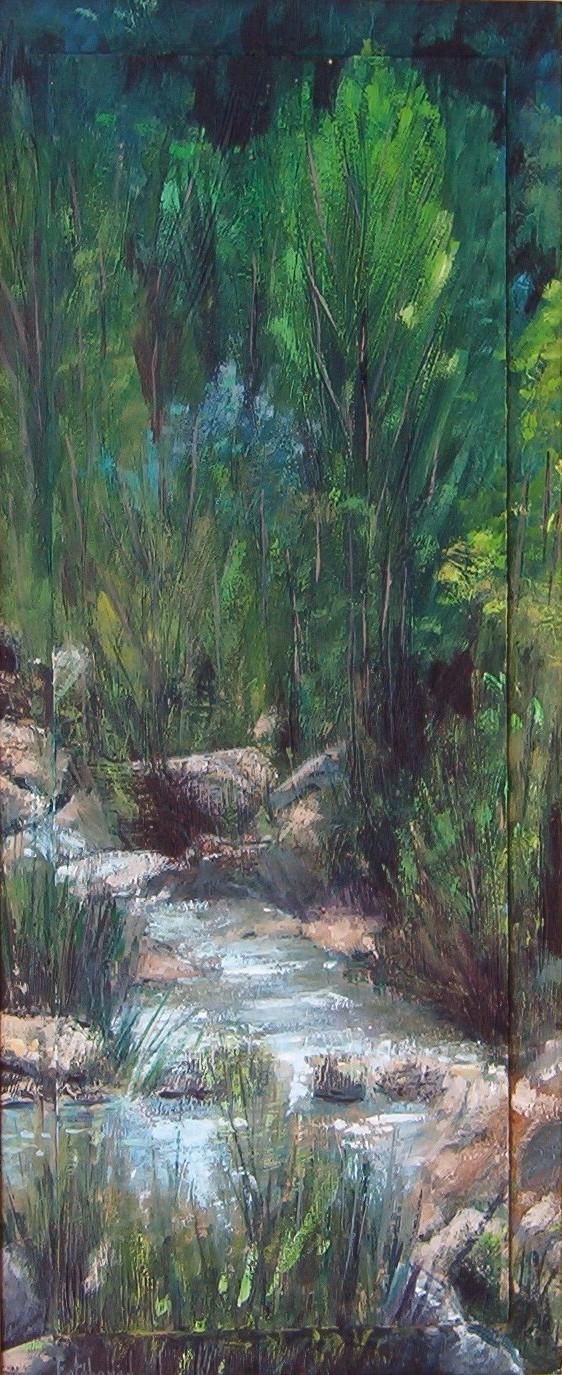 Arroyo alta montaña
