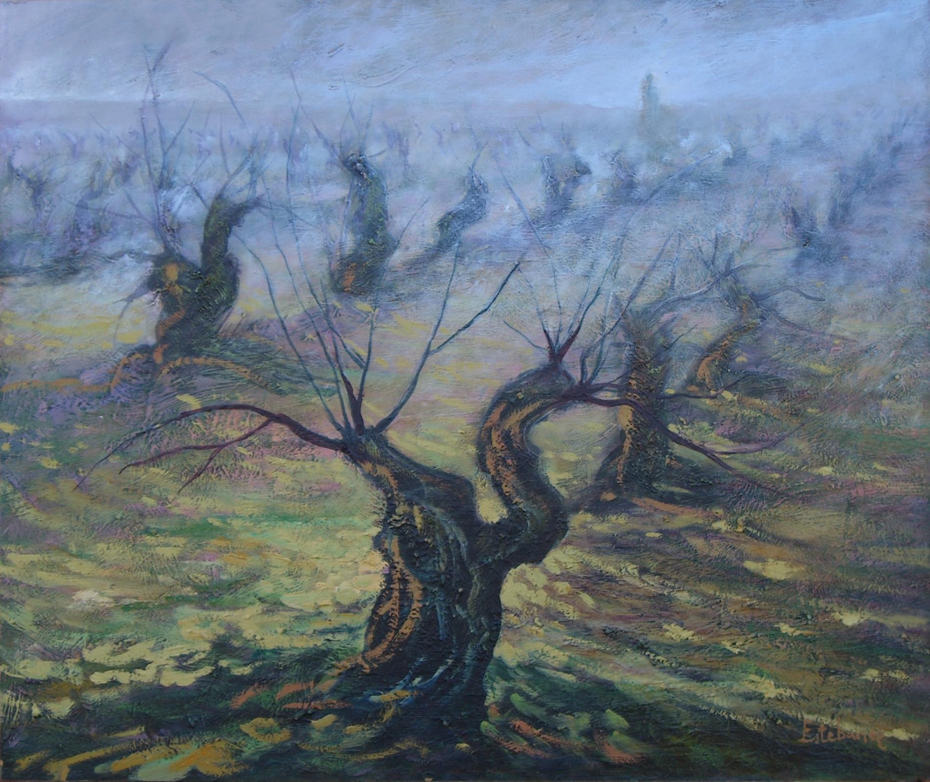 Niebla en el viñedo