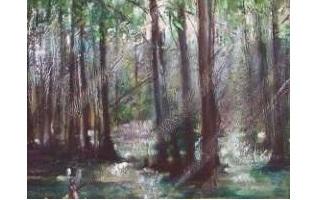 En aguas pantanosas de Orlando
