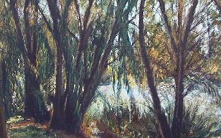 Ribera del carrion